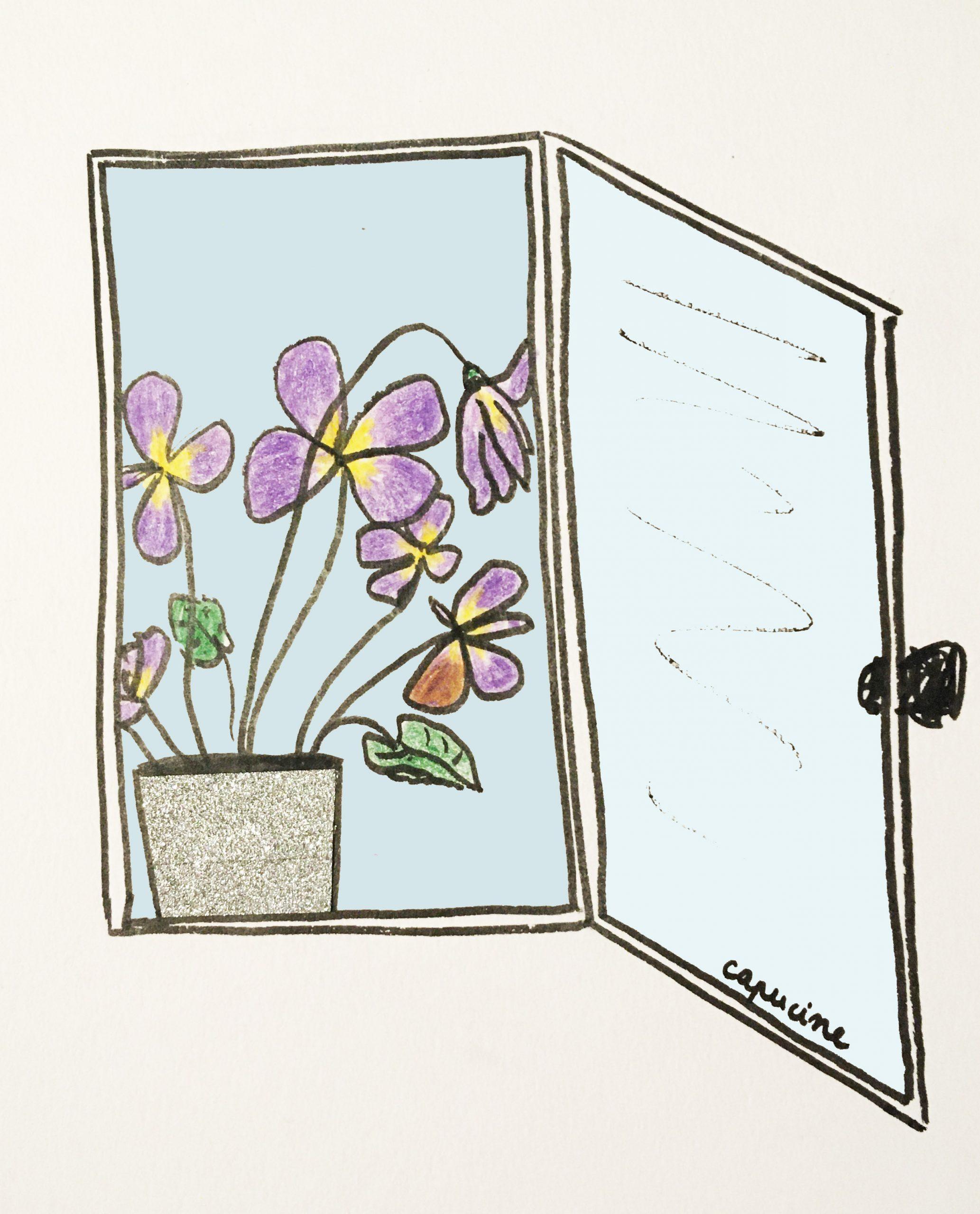 Chapitre 4 - Les violettes au bord de la fenêtre